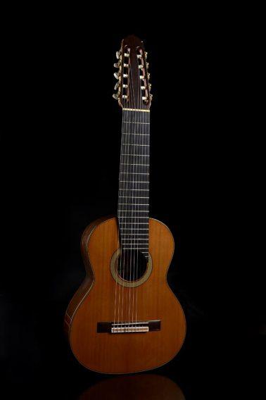 Guitarra clásica 12 cuerdas